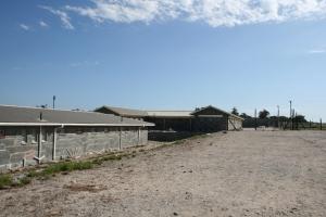 CapeTown2009 085