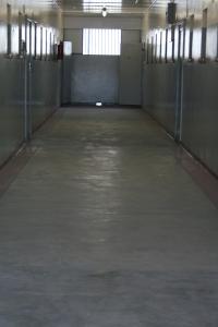 CapeTown2009 095
